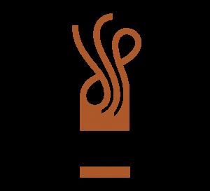 DSP_Logo_Pos_RGB (2)